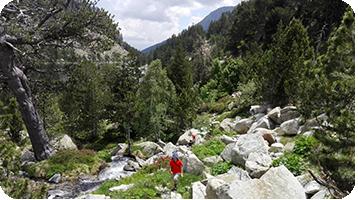 Parc Nacional