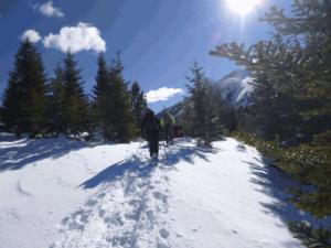 Rutas en Raquetas de Nieve Nivel Fácil en Pirineo. Incluye alquiler de raquetas. Tarifa 35€. Nieve por el Pirineo
